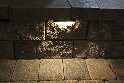Wall Eye II – 12 volt WARM (3000 K) 2 watt CMD Flat LED – Low-Voltage Landscape Ligh ...