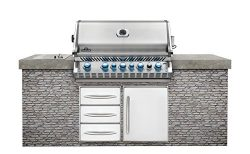 Napoleon Grills Built-in Prestige PRO 665 with Infrared Rear Burner Stainless Steel Natural Gas  ...