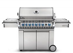 Napoleon PRO665RSIBNSS Prestige Natural Gas Grill, Stainless Steel